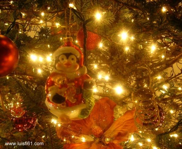 El arbolito de navidad ya ilumina mi casa luis figueroa - Arbolito de navidad ...
