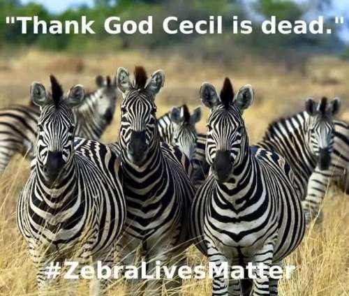 Zebra-Lives-Matter