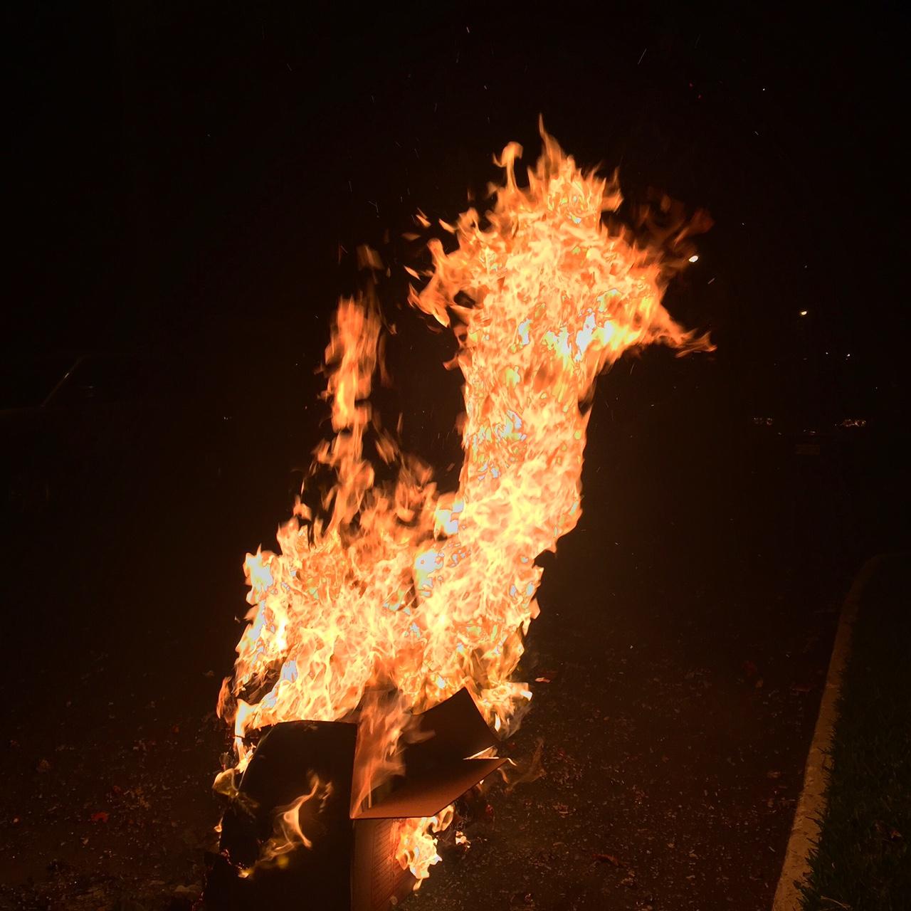 fuego-luis-figueroa